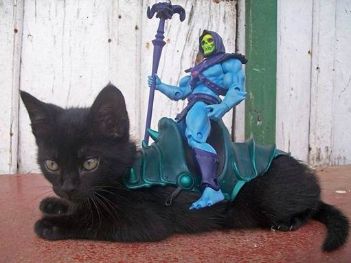 Skeletor_Cat