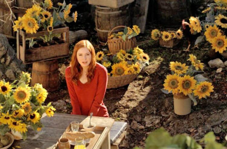 VanGoghWhoSunflowers