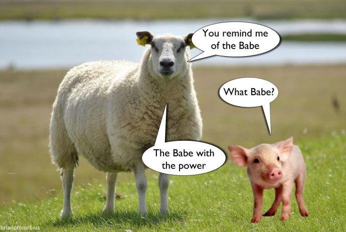Babe-Pig